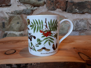 Autumn / Fall China mug by Alice Draws The Line. This is the Autumn / Tree-mendous design with lots of woodland fruit, nuts and seeds.