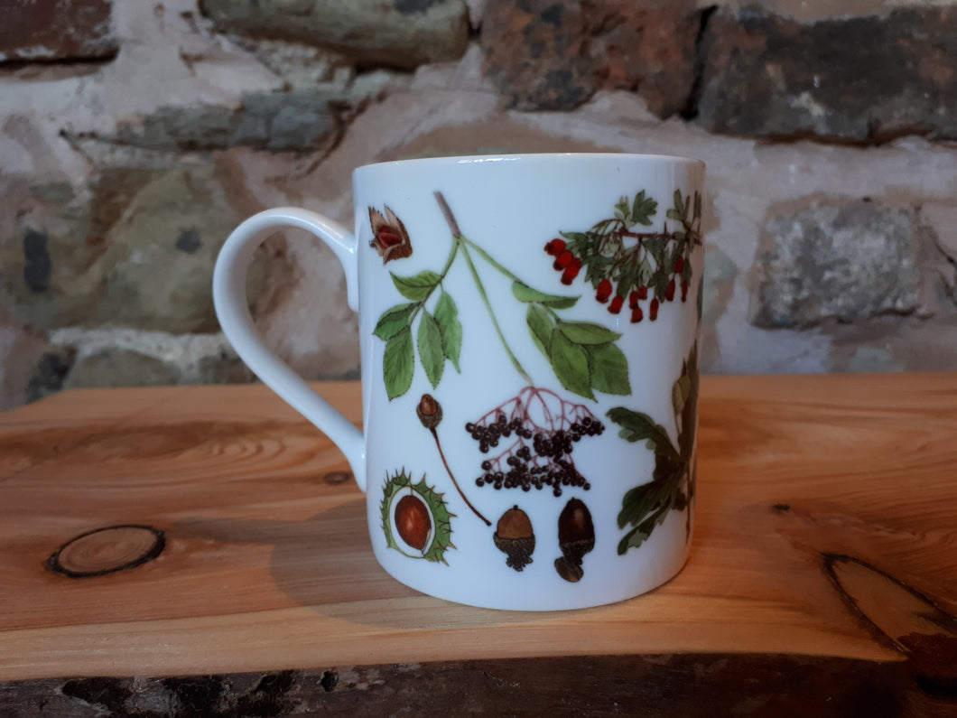 Autumn China mug by Alice Draws The Line, forest gift, enamel mug with Autumn / fall fruits, seeds and nuts