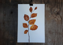 Load image into Gallery viewer, Autumnal Beech leaves by Alice Draws The Line