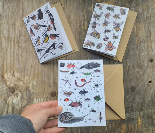 Birds, Bees and Bugs set of 3 greeting cards printed on recycled card, blank inside