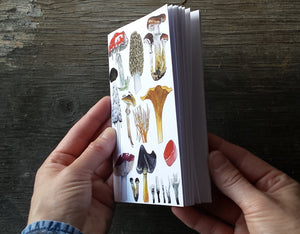 Fungi and Mushrooms Notebook by Alice Draws The Line, A6 with 36 plain pages, recycled paper