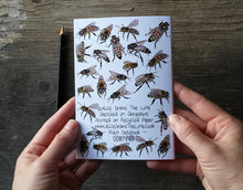 Load image into Gallery viewer, Honey Bees Notebook by Alice Draws The Line, A6 with 36 plain pages, recycled paper