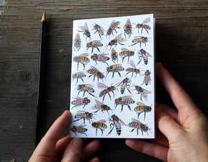 Honey Bees Notebook by Alice Draws The Line, A6 with 36 plain pages, recycled paper