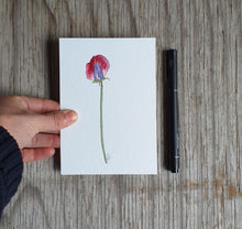 Load image into Gallery viewer, Sweet pea illustration