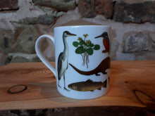 Load image into Gallery viewer, Rivers mug by Alice Draws The Line, river species illustrated on this China mu