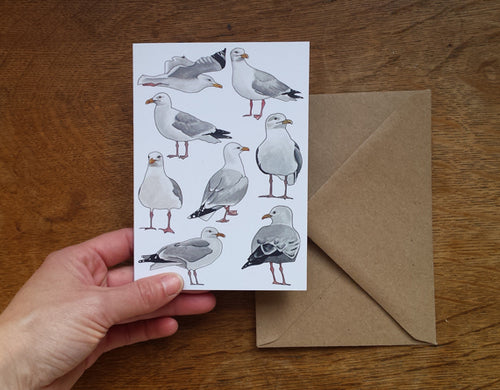 Seagull / Herring Gull greeting card, blank inside