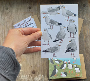 Seaside selection of cards by Alice Draws The Line, set of 3 greeting cards, printed on recycled card and blank inside