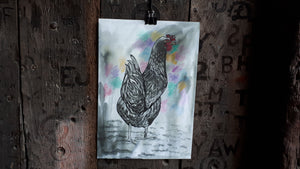 The hen by Alice Draws the Line