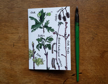 Load image into Gallery viewer, Tree Identification Birds Notebook by Alice Draws The Line, A6 with 36 plain pages, recycled paper