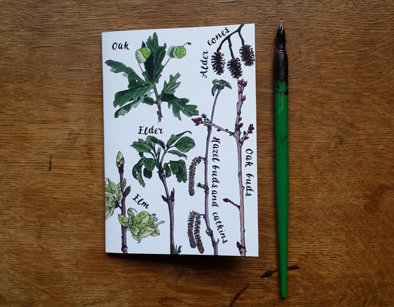 Tree Identification Birds Notebook by Alice Draws The Line, A6 with 36 plain pages, recycled paper
