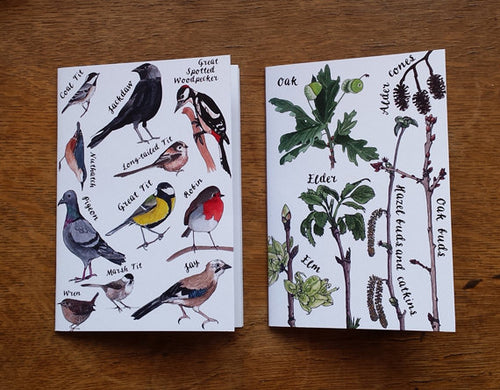 Nature Notebook 2 pack