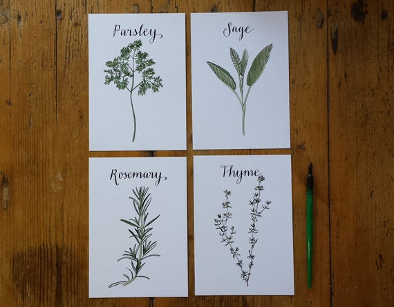 Parsley, Sage, Rosemary and Thyme Art Prints