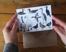 Load image into Gallery viewer, On the Pond - Ducks and Friends Greeting Card by Alice Draws The Line featuring a range of feathered friends that you might find on a pond