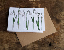 Load image into Gallery viewer, Snowdrop card by Alice Draws The Line featuring botanical illustrations of the iconic early sprig flowers - blank inside; any occasion