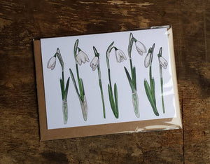 Snowdrop card by Alice Draws The Line featuring botanical illustrations of the iconic early sprig flowers - blank inside; any occasion