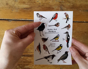 Garden bird sticker sheet by Alice Draws The Line, children's gift, stocking filler