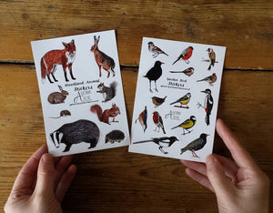 Woodland Animals Sticker sheets by Alice Draws The Line