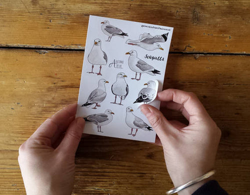 Seagull Sticker Sheets by Alice Draws The Line