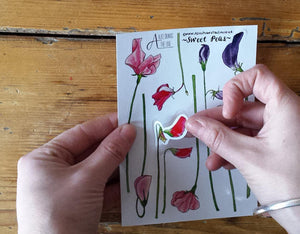 Sweet Pea sticker sheets