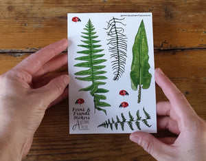 Fern, Bracken and Ladybird sticker sheets