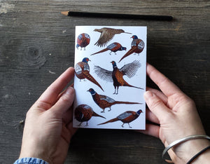 Pheasants Notebook by Alice Draws The Line, recycled paper, A6 paper