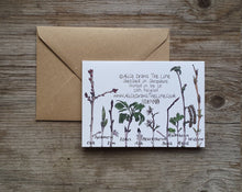 Load image into Gallery viewer, Woodland Wonders Card Collection by Alice Draws The Line