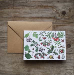 Woodland Wonders Card Collection by Alice Draws The Line