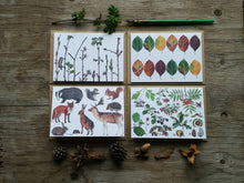 Load image into Gallery viewer, Woodland Wonders pack of 4 Greetings Cards featuring illustrations and hand lettering by Alice Draws The Line. British woodland illustration