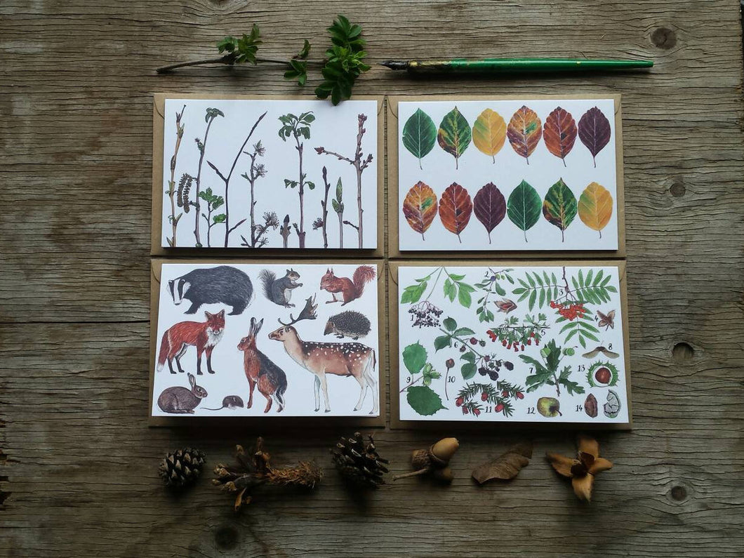 Woodland Wonders pack of 4 Greetings Cards featuring illustrations and hand lettering by Alice Draws The Line. British woodland illustration