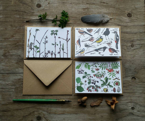 Flora and Fauna pack of 3 Greetings Cards