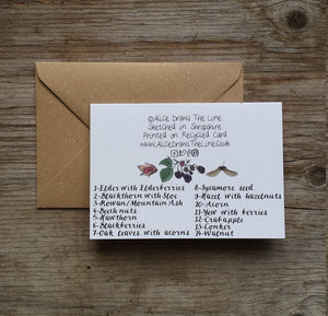 Tree-mendous autumn Greeting Card by Alice Draws The Line featuring a range of woodland finds, all identified with hand lettered labels