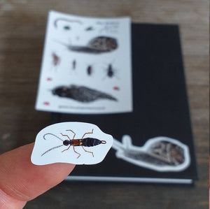 Bugs mini sticker sheet