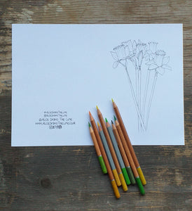 Printable Colour in Daffodil card