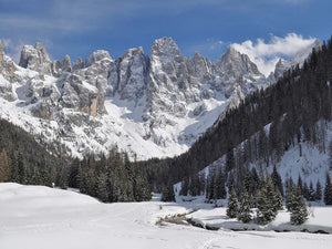 FOUR DAYS ON THE SNOW. SPEND FOUR DAYS ON THE MOUNTAINS IN A SPLENDID TYPICAL APPARTMENT.
