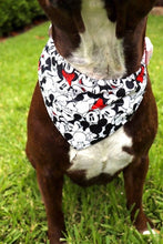 Load image into Gallery viewer, Mickey Mouse Bandana
