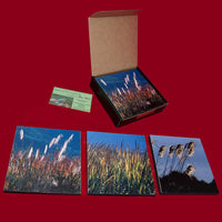 Grasses, Set of Three