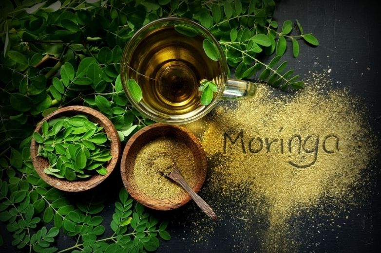 Moringa leaves: - The miracle tea