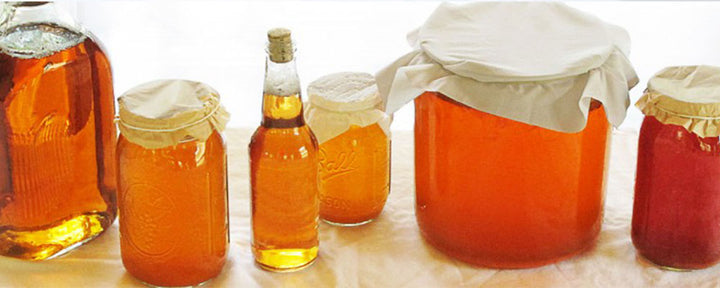 KOMBUCHA TEA AND ITS BENEFITS