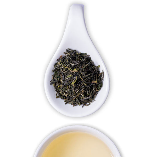Winter Forest Green Tea - The Tea Shelf