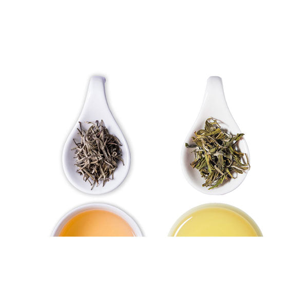 White Tea Bundle - The Tea Shelf
