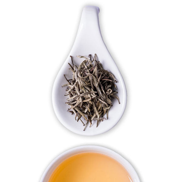 Silver Needles White Tea - The Tea Shelf