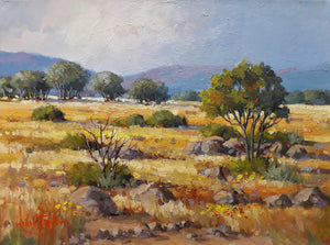 Oil on Stretched Canvas by Willie Strydom