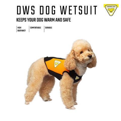 Dog Wetsuits