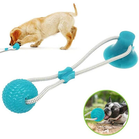 Suction Cup Dog Push Toy
