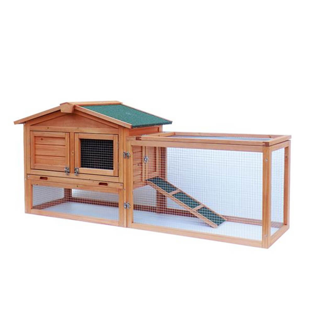 Backyard Chicken Coop House