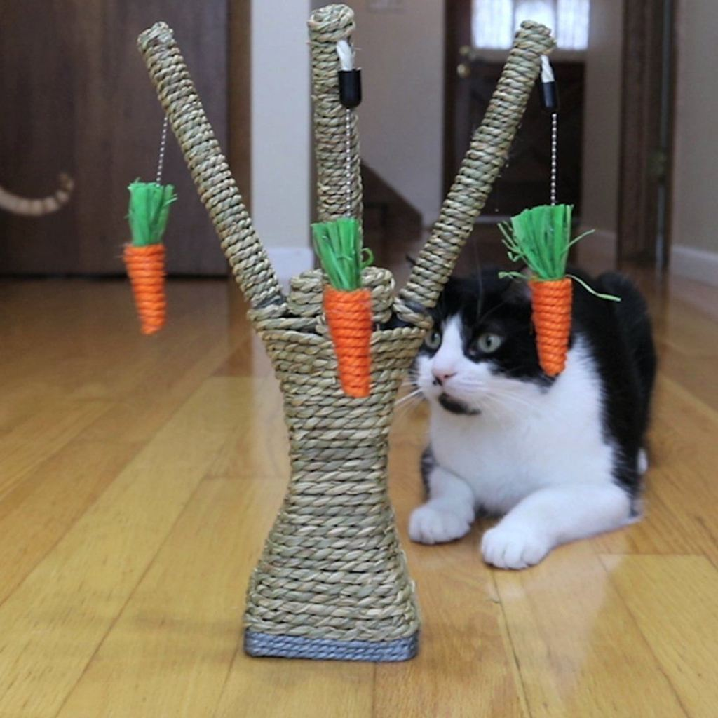 Cat Scratching Tree - Sisal Rope Cat Interactive with 3 hanging carrots - Funny Cats Shop