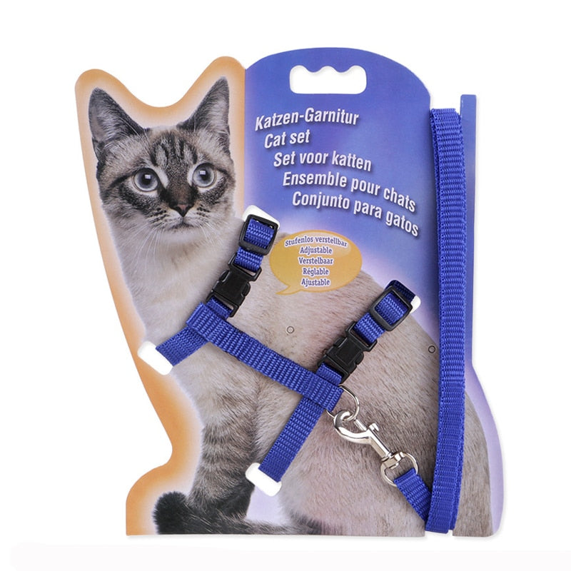 Colorful Adjustable Cat Harness - Lead and Leash for Kittens - Funny Cats Shop