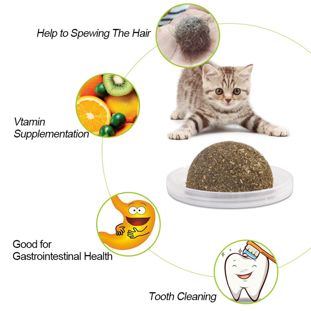 Natural Edible Catnip Toy - Funny Cats Shop