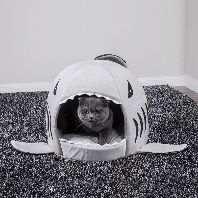 Shark Shape Cute Cat House - Funny Cats Shop