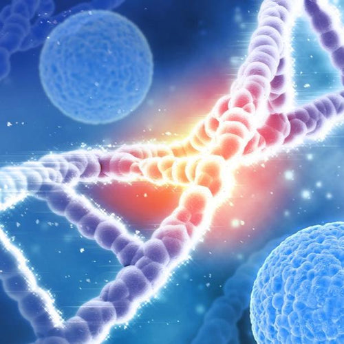 dna and chromosome for understanding ancestry cancer risk and hereditary diseases